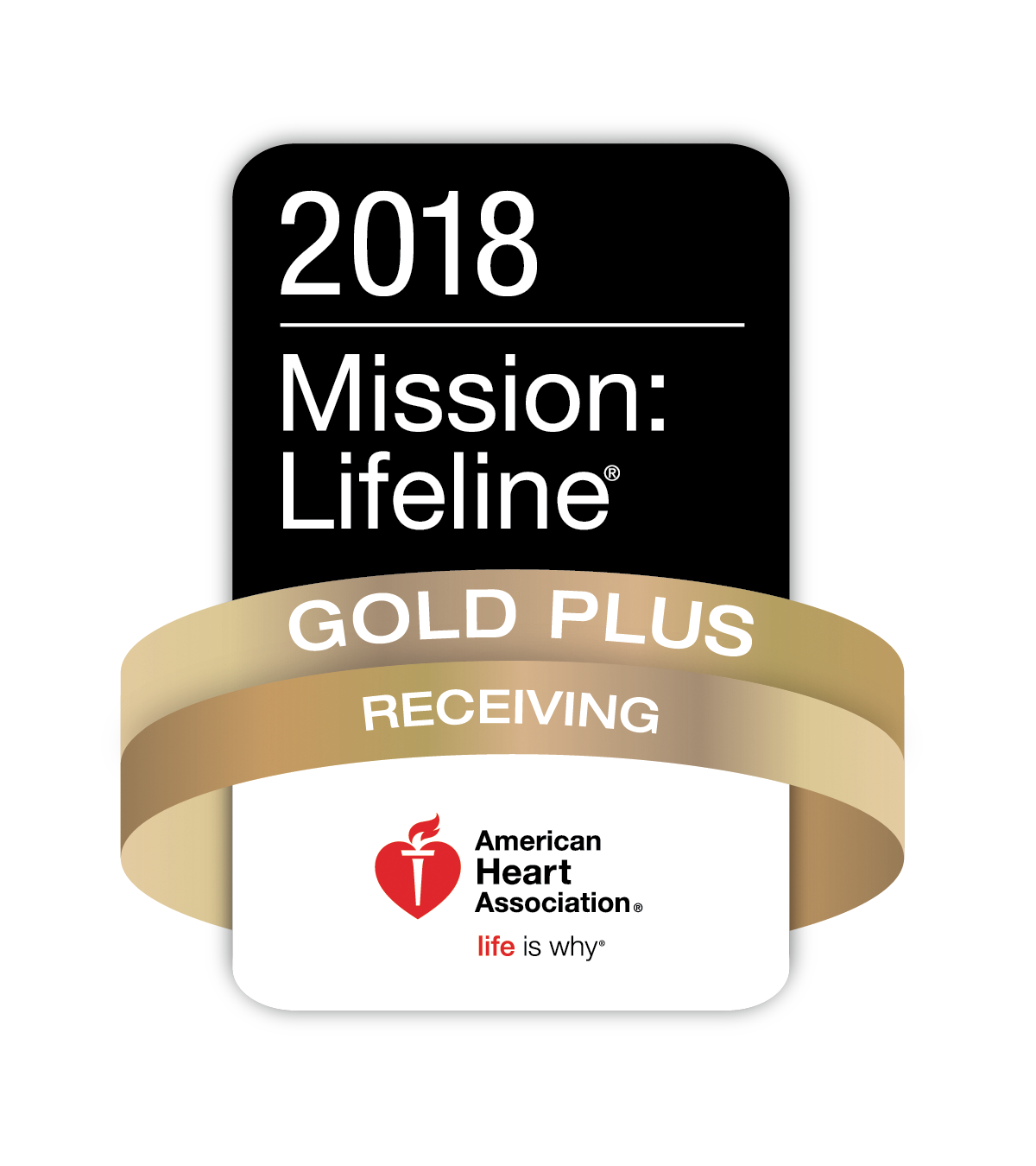 STEMI%20Mission%20lifeline%202018%20gold%20plus%20logo.png